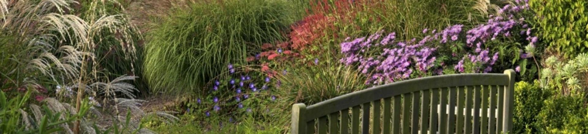 John-Horsey-Horticulture-Garden-Design-Course-Axminster