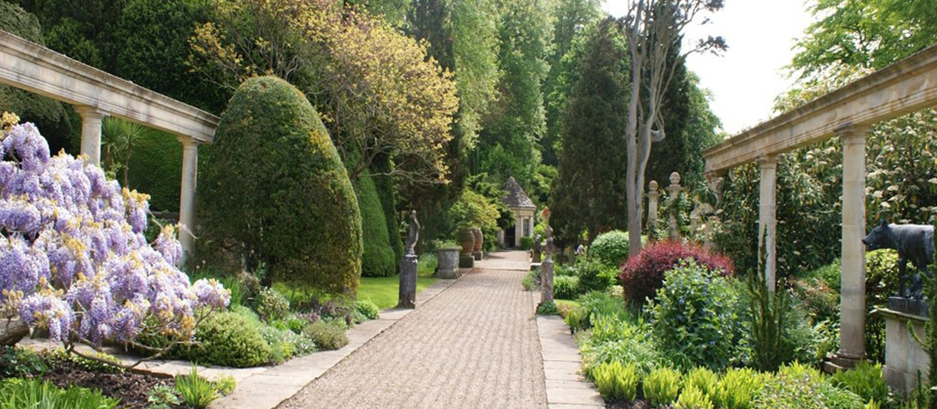 John-Horsey-Horticulture-Gardening-Devon